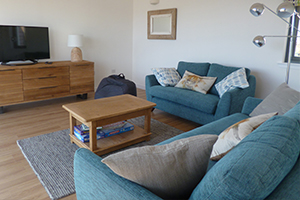 A photo of the living room - two teal coloured sofas, a coffee table and a television